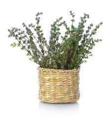 Thyme herb in basket on white background