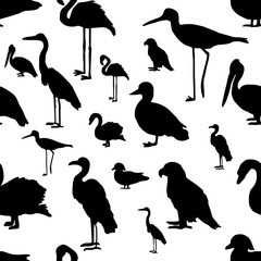 seamless pattern various kinds of birds silhouette - vector illustration hand drawn with black lines, isolated on white background