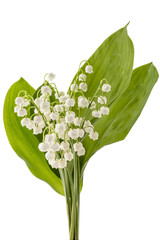 Photo sur Aluminium Muguet de mai Beautiful bouquet of lilies of the valley flowers, Convallaria Majalis, with green leaves isolated on white background