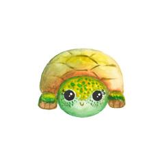Watercolor cartoon turtle