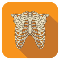Ribs Flat Icon Orange