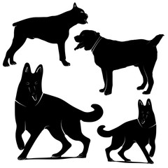 Vector silhouettes of different dogs on a white background.