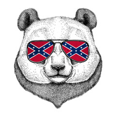 Panda bear, bamboo bear wearing glasses with National flag of the Confederate States of America Usa flag glasses Wild animal for t-shirt, poster, badge, banner, emblem, logo