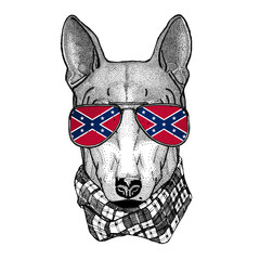 DOG for t-shirt design wearing glasses with National flag of the Confederate States of America Usa flag glasses Wild animal for t-shirt, poster, badge, banner, emblem, logo