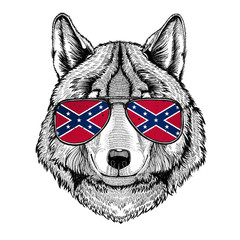 Wolf Dog wearing glasses with National flag of the Confederate States of America Usa flag glasses Wild animal for t-shirt, poster, badge, banner, emblem, logo