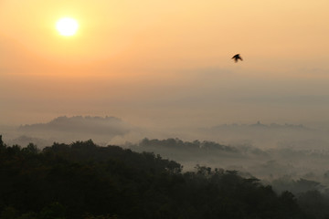 Sunrise view of Borobudur temple in the background. Misty rainforest in Java, Indonesia, Southeast Asia.