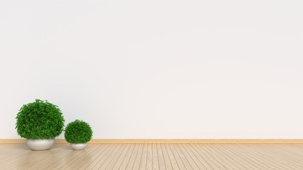 Ornamental plants placed on the empty room,3d rendering
