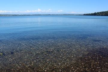 Sea floor under clear water at Drayton Harbor, Blaine, Washington