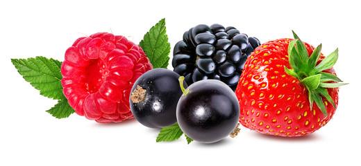 Fototapete - Raspberry, blackberry, currant, strawberry isolated