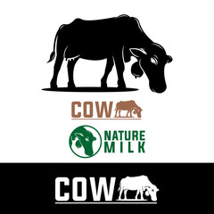 natural milk, healthy cow, isolated