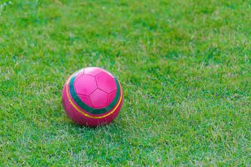 Pink soccer ball on grass field.