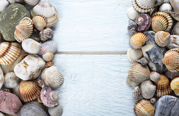 Sea shells arranged on a wooden background, announcement, card or invitation