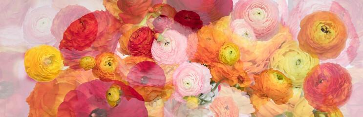 Photo on textile frame Flower shop ranonkels