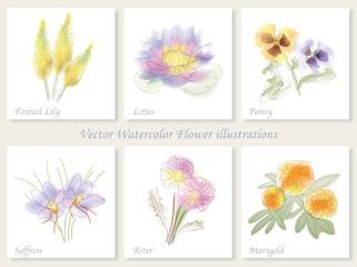 水彩風 6種類の花イラストセット