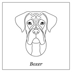 Isolated black outline head of german boxer on white background. Line cartoon breed dog portrait.