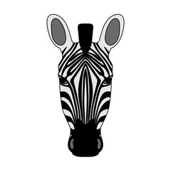 Isolated head of striped zebra on white background. Colored cartoon portrait.