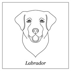 Isolated black outline head of happy labrador retriever on white background. Line cartoon breed dog portrait.