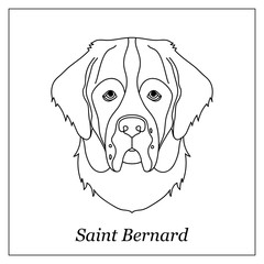 Isolated black outline head of saint bernard on white background. Line cartoon breed dog portrait.