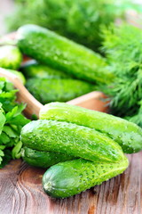 Fresh cucumbers for salad