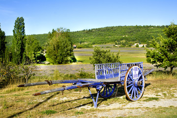 Wooden horse cart in a field of lavander at Provence France