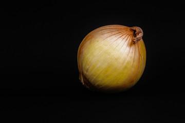 Onion on black.