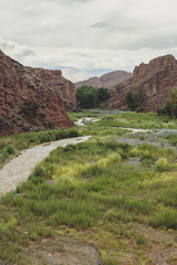 Calchaqui river canyon in Argentina.