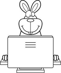 Rabbit Computer