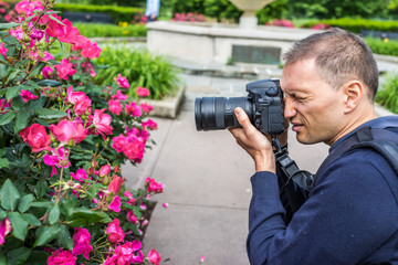Side portrait closeup of young man professional photographer taking pictures of red and pink blooming roses with water drops in park