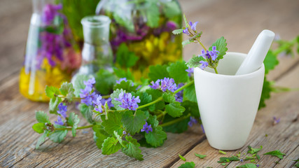 Mortar of healing herbs and bottles of healthy tincture or infusion on background. Herbal medicine concept.