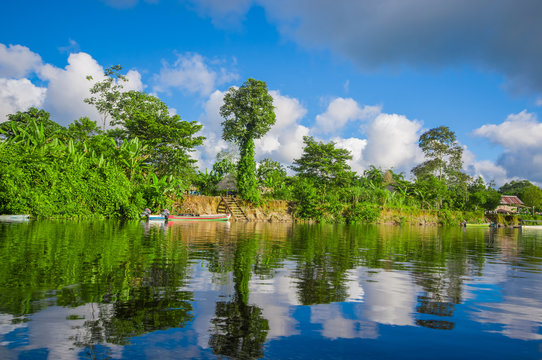 Jungle reflected on the river, inside of the amazon rain forest of Cuyabeno Natiional Park in Ecuador