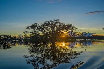 Trees silhouetted against an orange sky at sunset over Laguna Grande in the Cuyabeno Wildlife Reserve National Park, in Ecuador