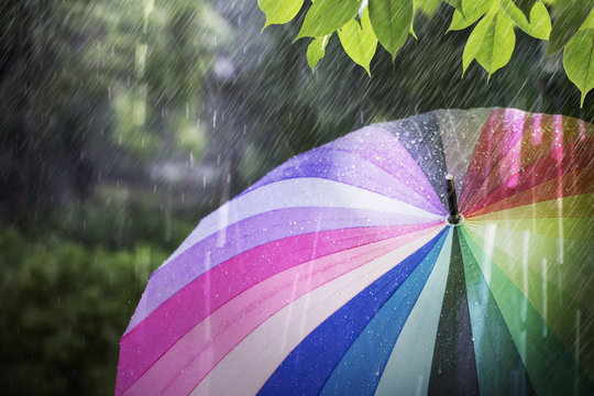 Rain falling and colorful umbrella in rainy day