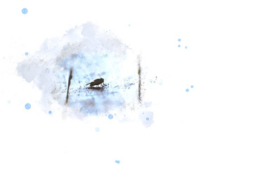Small fly on watercolor painting background.