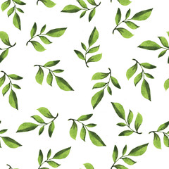 Seamless pattern with fresh green leaves and branches painted by watercolor. Hand drawn illustration.