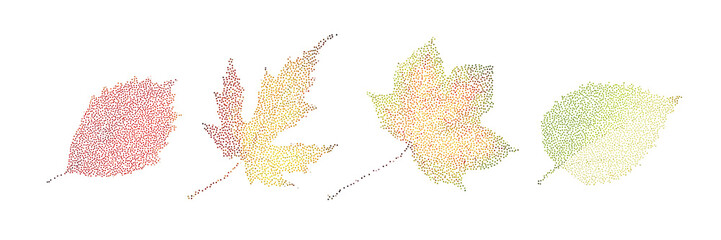 Stipple colorful isolated vector botanic garden nature Autumn leaf collection