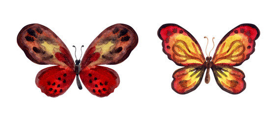 Set of decorative watercolor butterflies in red tones, watercolor pattern on a white background.