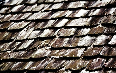 dirty old wood roof