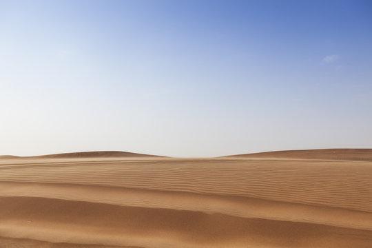 Dubai desert dune