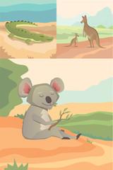 Australian animals vector crocodile, koala and kangaroo flat style