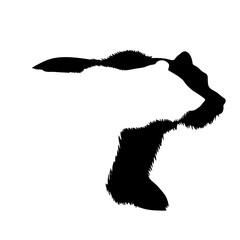 Vector silhouette of bear logo on white background.