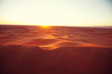 Canvas Prints Magenta Sand dunes