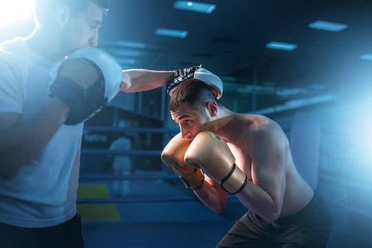 Boxer in gloves exercises with sparring partner