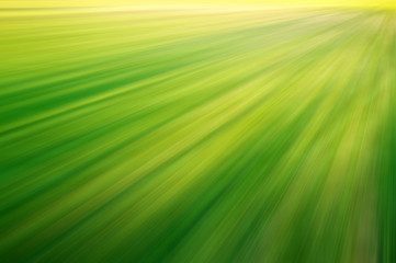 Green background abstract nature headers wallpaper