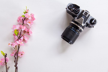 top view image of Sakura next to old camera on White wooden table