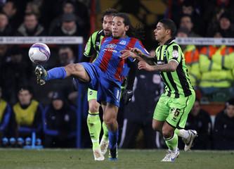 Crystal Palace v Brighton & Hove Albion npower Football League Championship