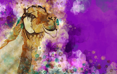 Colorful Watercolor Dromedary Camel Illustration