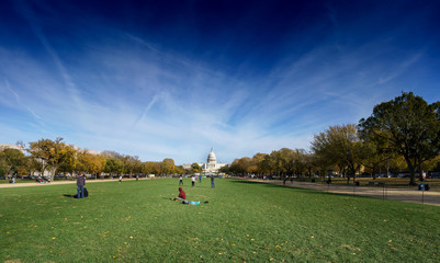 Grass park and Capitol building in distance, Washington DC, USA.