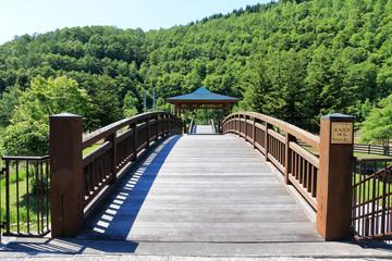 木造の橋 / どんぐりばし
