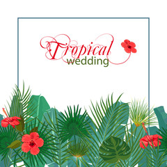 Hand drawn tropical palm leaves and jungle exotic flower flyer template on white background with seamless frame border