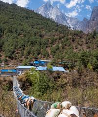 Bridge to village in Nepal
